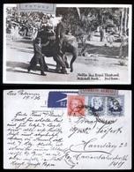 ESPANA - 1936 - CORREO AEREO - TARJETA POSTAL ENVIADA POR LAS PALMAS EN ALEMANIA - ELEFANTE PARK DURBAN - Poste Aérienne
