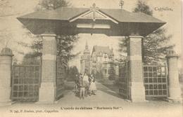 Hoogboom - L'entrée Du Château Hortensia Hof -  - H747 - Kapellen