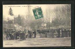 CPA Chatillon-sur-Loire, Le Marche Aux Porcs - Chatillon Sur Loire