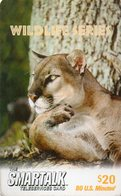 UNITED STATES - SMART TALK - THEMATIC ANIMALS - LYNX - Verenigde Staten