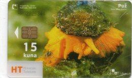 CROATIA - CHIP CARD - THEMATIC ANIMALS - PUZ GASTROPODS - MINT IN BLISTER - Croazia
