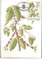 SAO TOME E PRINCIPE CAFE KAFE COFFEE - Heilpflanzen