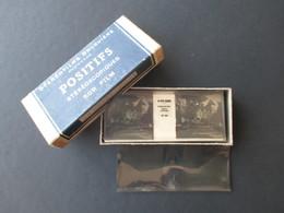 STEREOFILMS BRUGUIèRE (V1922) POSITIFS STéRéOSCOPIQUES SUR FILM (1 Vue) LA COTE BASQUE (1) - Stereoscopi