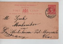 PR7641/ Natal Entire PC Illistrated ( Written In German) C.Durban 1903 > Merzweiler Germany Arrival Cancellation Tears - Natal (1857-1909)