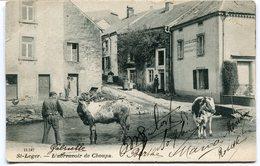 CPA - Cartes Postales - Belgique - Saint Léger - L'Abreuvoir De Choupa - 1905 ( I10623) - Saint-Léger