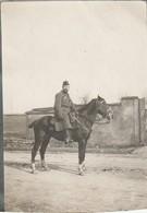 "Photo 1915 Le Père Jésuite ""Poidebard"" Sur Son Cheval Gobelin, Dragon (A216, Ww1, Wk 1) - War 1914-18"
