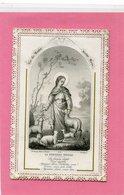 CANIVET - Vie De Marie, Notre Mère - - Images Religieuses