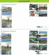 Nfh191A+Bfb FAUNA UIL VOGELS HAGEDIS CACTUS FLOWERS LIZARD BIRDS OWL HUMMINGBIRD NATURE PHOTOGRAPHY ARUBA 2013 FDC'S - Stamps