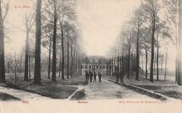 NIEL - Fraai Zicht Van De Kerklei Met Kasteel Op De Achtergrond - Animatie - Uitg. Duvivier - 1908 - Niel
