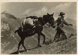 ALPINI FEDELE COMPAGNO 1940 - Regimente