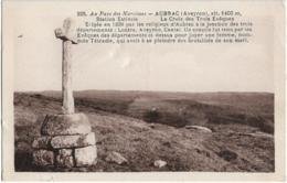 D12 - AUBRAC - LA CROIX DES TROIS EVÊQUES ERIGEE EN 1238  PAR LES RELIGIEUX D'AUBRAC  A LA JONCTION DES 3 DEPARTEMENTS - Francia