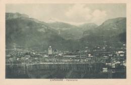 Z.896. CAMAIORE - Lucca - Italia