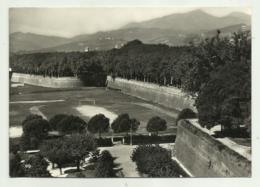 LUCCA - LE MURA - VIAGGIATA  FG - Lucca