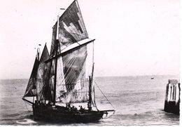 Barque Tréportaise - France