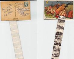50 Cartes . Plusieurs Avec Bonne Cote + Des Moyennes + Des Petites . Départ à 10 Euros. Lot N°110   Toutes Scannées . - 5 - 99 Postcards
