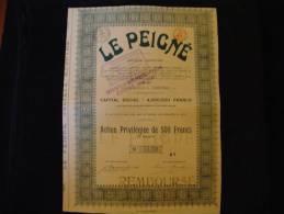 """Action Privilégiée""""Le Peigné""""Capital Social 4 000 000F Verviers  1920 Textile,laine,wool - Textil"""