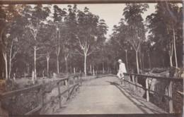 Photo De Sumatra Circulée En 1912 - Indonesia