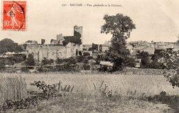RAUZAN Vue Générale Et Le Château - Autres Communes