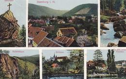 AK Ilsenburg I. H. - Mehrbildkarte - Ilsenstein Rabenklippe Schloss Rote Forellen Ilsefälle - Ca. 1920 (45273) - Ilsenburg