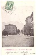 ARCIDOSSO (GROSSETO)   VIA VITTORIO EMANUEL1906   CARTE ANIMEE - Italie
