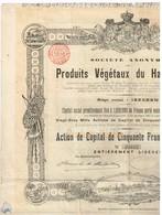 Ancienne Action Congolaise - Société Anonyme Des Produits Végétaux Du Haut-Kassaî - Titre De 1898 - Landbouw