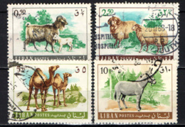 LIBANO - 1968 - ANIMALI DOMESTICI - USATI - Libano