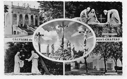 PONTCHATEAU - LE CALVAIRE - MULTIVUES - FORMAT CPA NON VOYAGEE - Pontchâteau