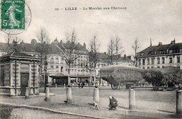CPA LILLE LE MARCHE AUX CHEVAUX - Lille