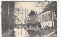 ZOTTEGEM   /  KASTEEL EGMONT / DREEF EN VIJVER  1909 - Zottegem