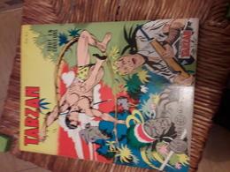 Tarzan Tout En Couleurs 28  Editions Del Duca Mondiales - Tarzan