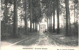BRUGELETTE-DENDRE   La Grotte Blanche. - Brugelette