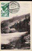 49387 Germany (wurttemberg) 84pf  Mi-12 - 1948 -  Schloss Lichtenstein, Architecture, Schloss Chateau Castle - Zone Française