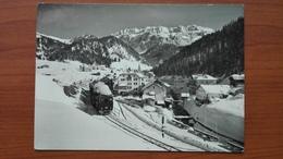 Val Gardena - Selva ( Treno ) - Bolzano (Bozen)
