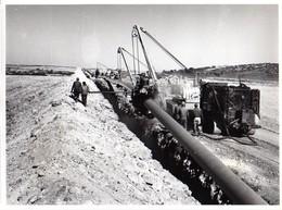 S48-003 Algérie - Construction Du Gazoduc D'Hassi R' Mel à Arzew - Enrobage Du Pipe - Africa