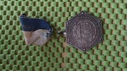 Medaille :Netherlands  -  W.s.v Waterlandtocht Landsmeer  / Vintage Medal - Walking Association - Nederland