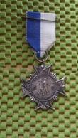 Medaille :Netherlands  -  W.S.V De Wit - Purmerend - 1961-1966 / Vintage Medal - Walking Association - Nederland
