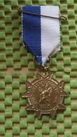Medaille :Netherlands  - Zuid - Veluwe-Tocht Dieren  / Vintage Medal - Walking Association - Nederland