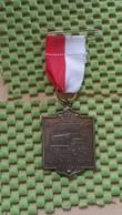 Medaille :Netherlands  - 9 E C.L.M Naarjaartocht Ijhorst Staphorst  / Vintage Medal - Walking Association - Nederland