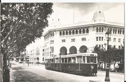Photo  - Tramway à Alger -  Thème Transport - Algérie - Treni