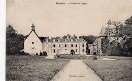 Iffendic (35) - Château Du Tréguil. - Autres Communes