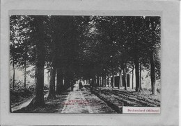 WECHELDERZANDE-LILLE :  HENDRIX-BEUKENDREEF-MILBURG-MET VOLK - Lille