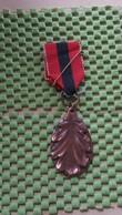 Medaille :Netherlands  - Herfst Kleuren Mars - N.W.V Nijmegen  / Vintage Medal - Walking Association - Nederland
