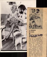 Atrice, Martine Carol, Autographe, Dedicace + Article De Presse A L Escale De Papeete     (bon Etat)  Dim: 18 X 13. - Foto Dedicate