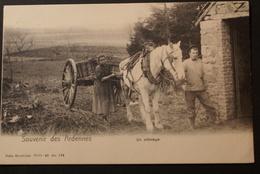 Un Attelage - Souvenir Des Ardennes - Belgique