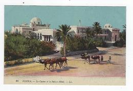CPA - Algérie - Biskra - Le Casino Et Le Palace Hôtel - Biskra