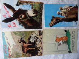 LOT 840 Grammes CPM UNIQUEMENT-FORMAT 10*15 CM-THEME ANIMAUX-PAS DE DOUBLES-quelques Scans Représentatifs - Postkaarten