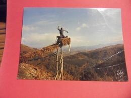 AZ1-LOT 12 CARTES POSTALES DIVERSES-VOIR SCANS - 5 - 99 Postkaarten
