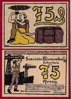 Allemagne 1 Notgeld 75 Pfenning Stadt Blumenthal  Dans L 'état N °5266 - Collections