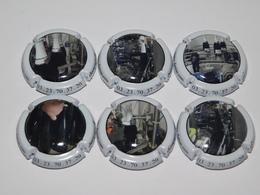 Série De 6 Capsules De Champagne  - DARNAC Et FILS N°48 - Sammlungen