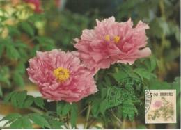 Carte Maximum - Taiwan - Formose - Flowers - Fleurs - Paeonia Suffruticosa - 1945-... République De Chine